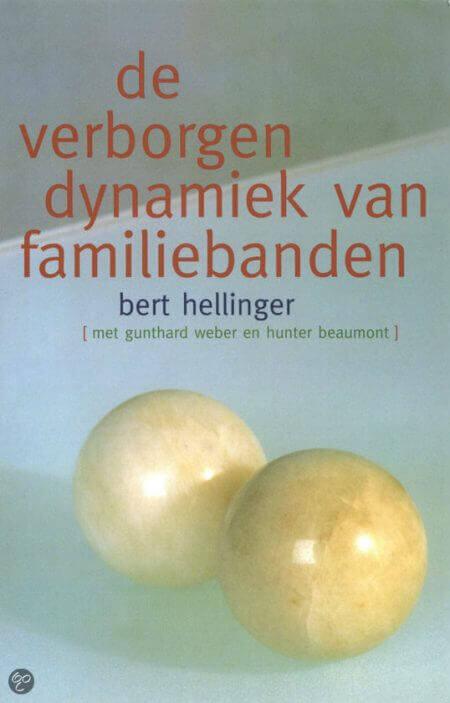 Systemisch Werk boek